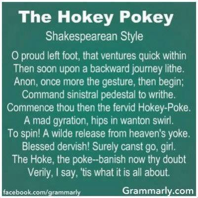 Summer skating Memories - Hokey Pokey by Shakespeare