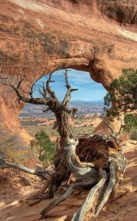 Arches National Park (photo by Clayhaus)