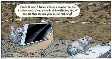 Online Mice