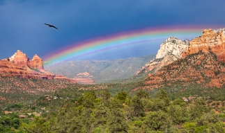 Raven and Rainbow over Mogollon Rim (photo by Harvey Stearn)