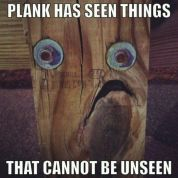 Plank PTSD