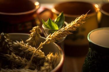 Harvest by TShingen (deviantart.com)