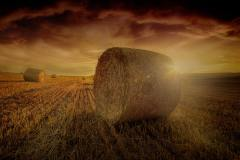 Hay Rolls Photo During Golden Hour, photo by Luca Huter (unsplash.com)