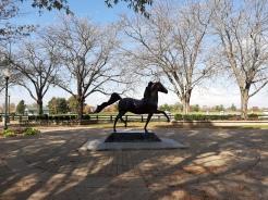 Kentucky Horse Park, Lexington