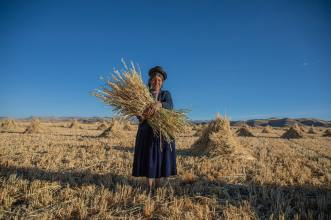 Woman Holding Hay, photo by Cesar Carlevarino Aragon (unsplash.com)