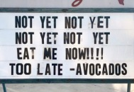 50-best-memes-ripe-avocados