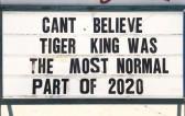 50-best-memes-tiger-king-normal-times