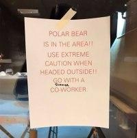 Alaskan Office Joke
