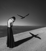 'Spread Your Wings and Fly' by Noell S. Oszvald (photobox.co.uk)