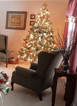 RIP Old Christmas Tree4