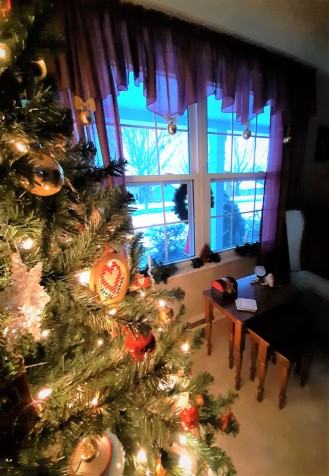 RIP Old Christmas Tree5
