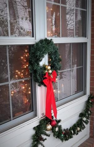 RIP Old Christmas Tree6
