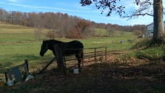 Amish country1