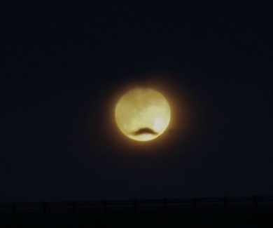 Cartoon Moon - courtesy of a passing cloud 'moustache'