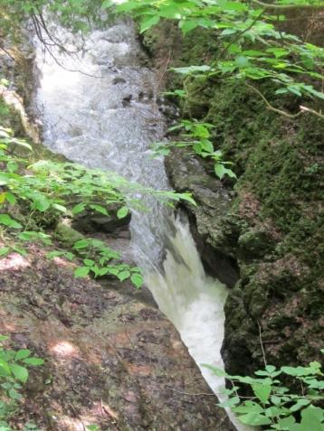 Clifton Gorge2