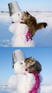 creative-funny-snowman-pictures-29
