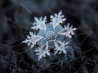 Exquisitly 'crafted' snowflake - photo credit, spicedpumpkins (boredpanda.com)