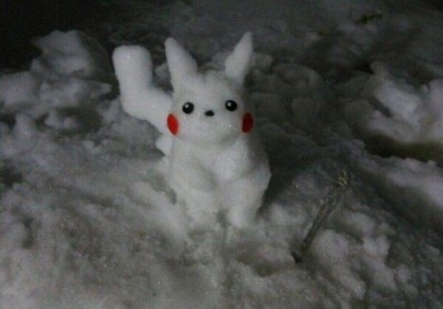 Funny-Snowman-Cat-Picture