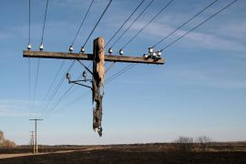 'I supported you, now you can support me' - Burned-out Utility Pole (boredpanda.com)