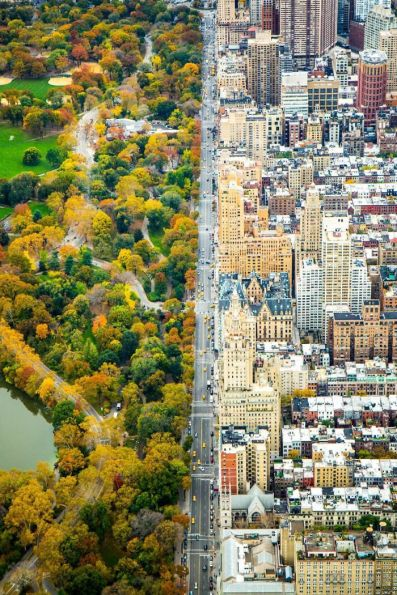 Two World's - Central Park Meets NYC - photo credit, imgur (boredpanda.com)