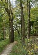 Winton Woods1