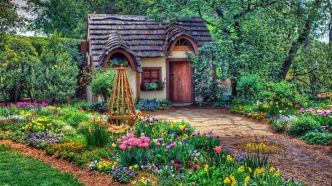 Cozy Cottage in the Woods (reddit.com)