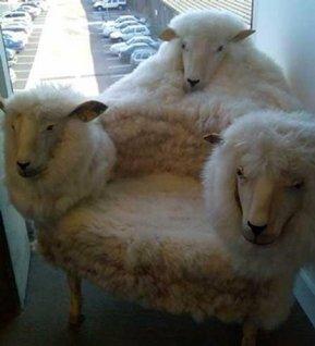 Sheepish easy chair - photo by obobrali (topito.com)