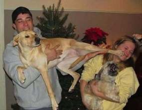 Why dogs shouldn't be in family photos 1(en.kueez.com)