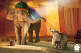 Dumbo by Michael Kutsche (boredpanda.com)