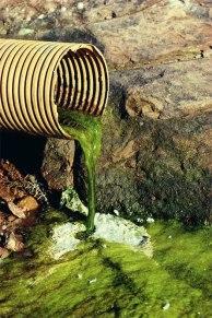 Water Pollution (se2pollutants.blogspot.com)