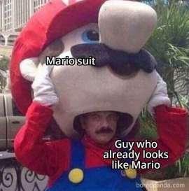 Mario Inside Mario - memesoliteral (boredpanda.com)