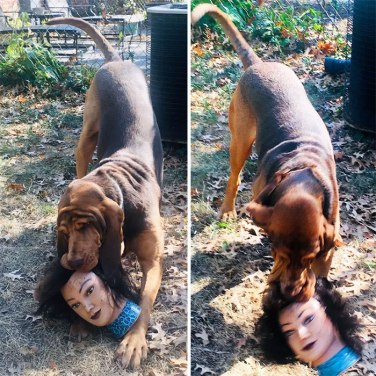 'Other dogs play with teddy bears or balls, ours plays with a human head. It kinda freaks the neighbors out' - nonmimeticform (boredpanda.com)