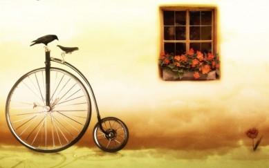 Bird on a Bike (wallpapersafari.com)