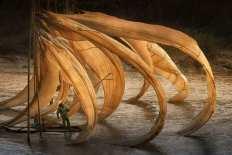 'Flying Fishing Nest,' China by Danny Yen Sin Wong (buzzerilla.com)