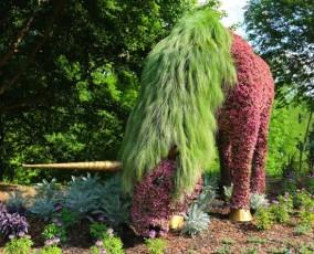 Living Sculpture 3 at Atlanta Botanical Garden (funcage.com)