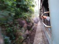 'On the Way from Vizag to Araku Valley' by Kingshuk Pal (unsplash.com)