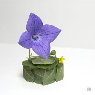 'Phonograph' made out of flower leaves and petals, by Raku Inoue(instagram.com)
