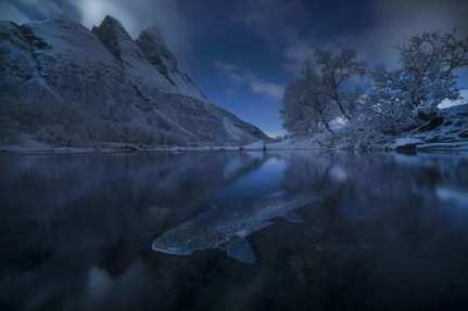 'Polar Trout,' Norway by Audun Rikardsen (buzzerilla.com)