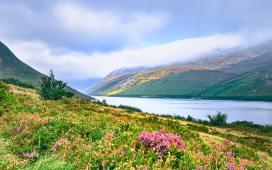 Silent Valley Reservoir, Northern Ireland - photo by K. Mitch Hodge (unsplash.com)