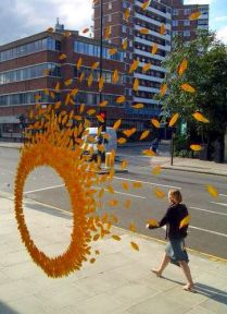 'Wheels of Fire' by Ken Marten (made from sunflower and delphinium leaves) (flickr.com)