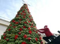 A Tropical Christmas (ebaumsworld.com)