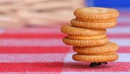 Cookie Carrying (stackexchange.com)