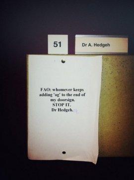 Dr. Hedgeh(og) (winkgo.com)