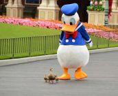 Duckwalk (winkgo.com)