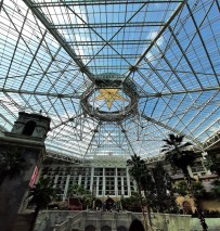 Gaylord Texan Conference Center