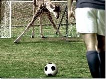 Interspecies Soccer