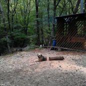 Log-Dog! (piximus.net)