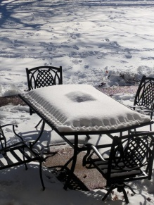 Pastry! (nope, snow-covered table) - dosoc (reddit.com)