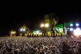 Rock Concert! (hope, cotton ready to harvest) (piximus.net)
