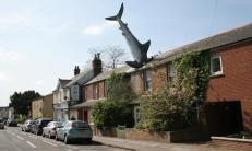 'We survived the sharknado!' - architecture shaming (boredpanda.com)